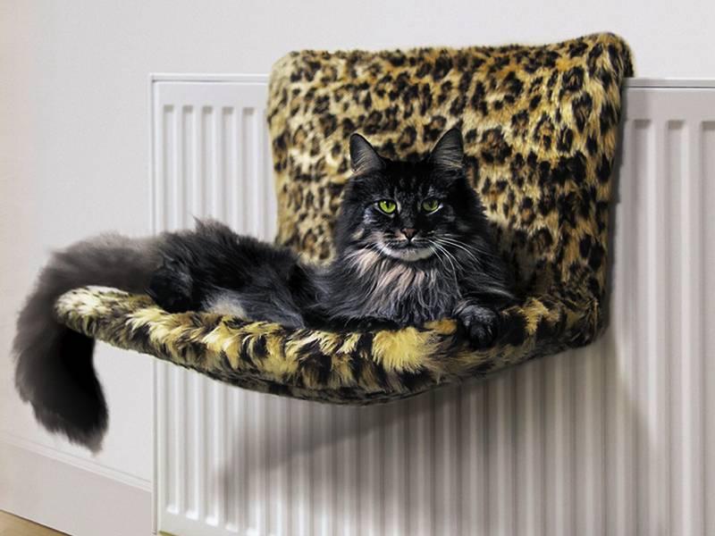 Лежанки для кошек своими руками- лучшие идеи с пошаговыми инструкциями