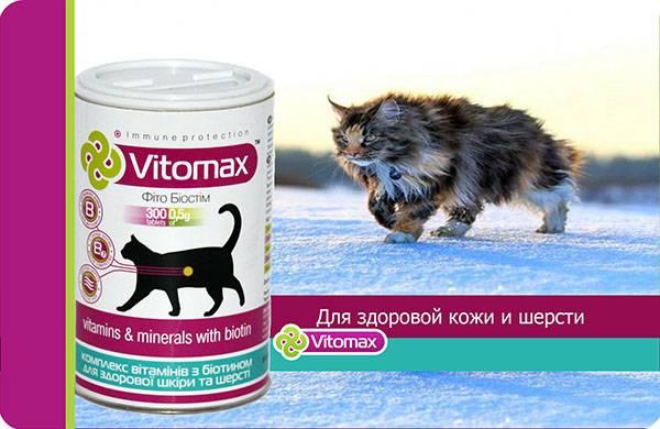 Витамины и корма для кошек с биотином от выпадения шерсти и для ее роста, а также улучшения состояния кожи