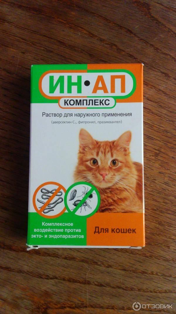 Ин-ап – антигельминтный и инсектоакарицидный комплекс для кошек