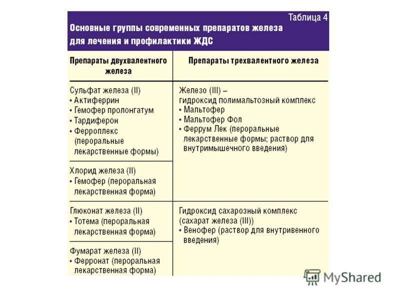 Анемия у кошек: лечение, препараты