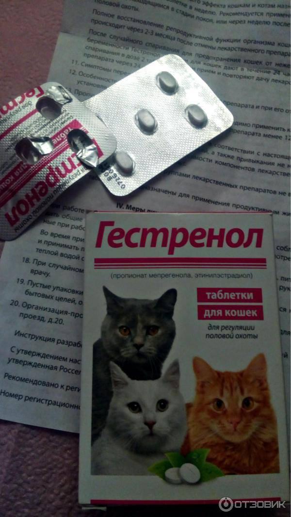Гестренол капли для кошек отзывы ветеринаров