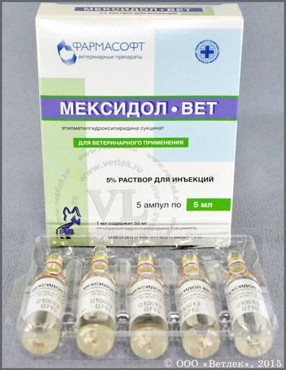 Мексидол вет 50 мг инструкция по применению. мексидол вет: инструкция по применению, состав, дозировка и цена. особенности хранения и цена