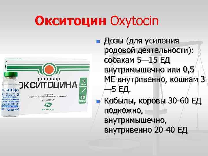 Когда колоть окситоцин кошке природах - oozoo.ru
