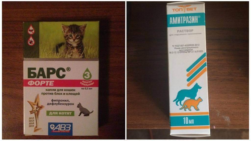 Капли от ушного клеща для кошек капли от ушного клеща для кошек