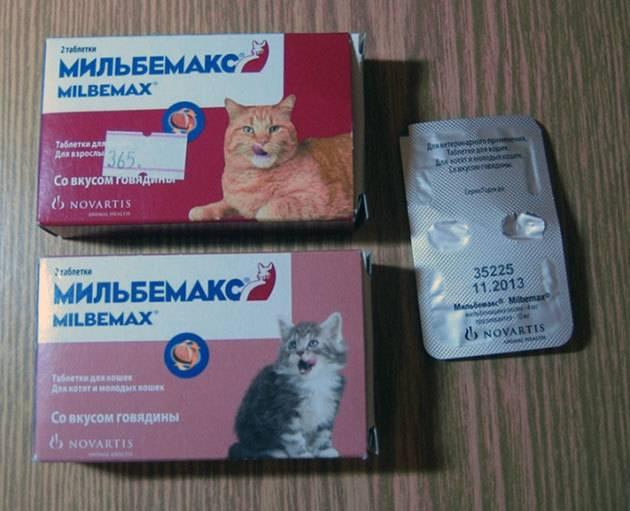 Лучшие аналоги препарата мильбемакс для кота - oozoo.ru