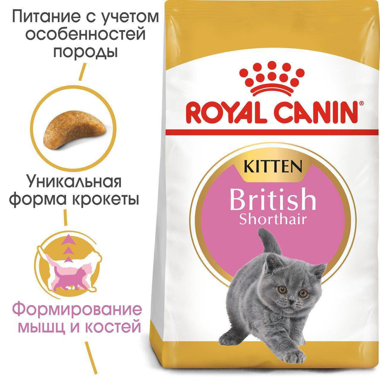 Чем кормить котенка британца