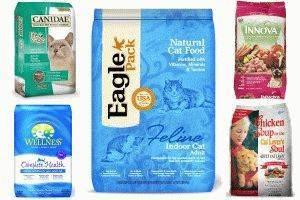 Рейтинг влажных кормов для кошек от премиум до холистик-класса