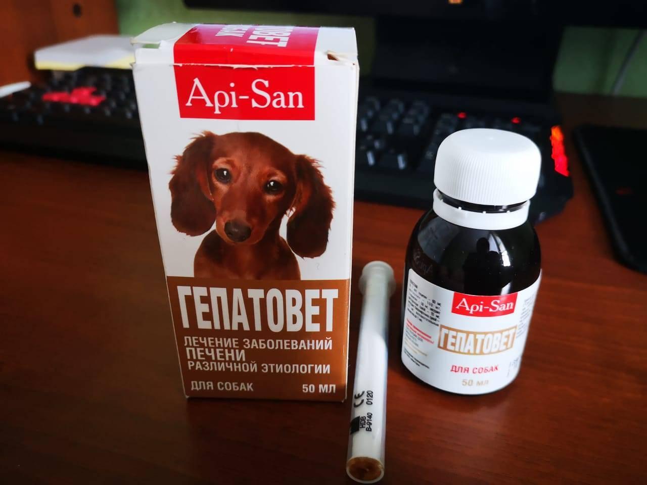 Состав препарата гепатовет для кошки: способ применения гепатопротекторов