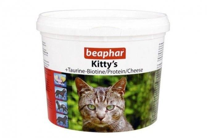 Таурин что это такое в корме для кошек вред или польза | my darling cats