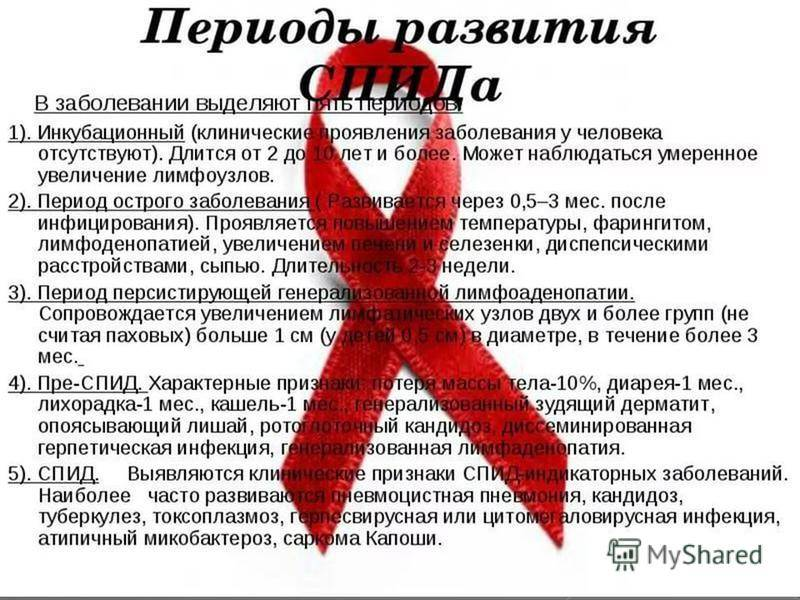 ᐉ вирусный иммунодефицит у кошек: симптомы и лечение, опасен ли кошачий спид для человека - kcc-zoo.ru