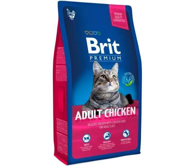 Самый лучший сухой корм для кошек
