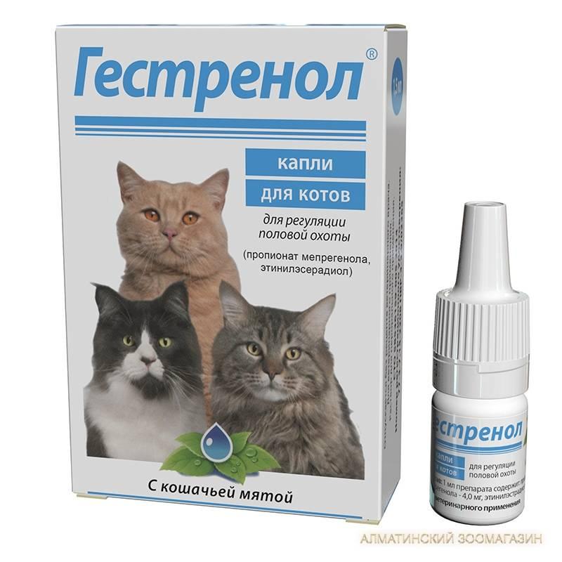 Капли для кошек гестренол: показания и инструкция по применению