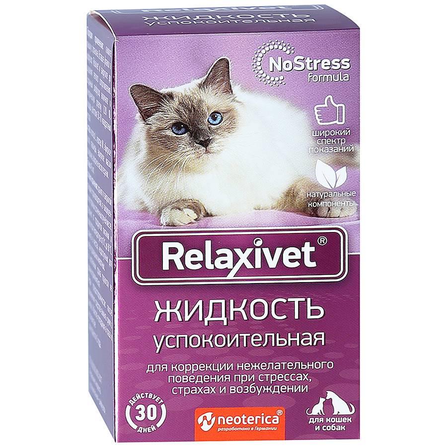 Успокоительное для кошек: домашние средства, таблетки, капли   сайт «мурло»