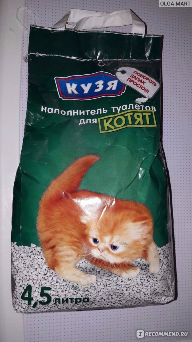 Кошка ест наполнитель для туалета - что делать? кошка ест наполнитель для туалета - что делать?