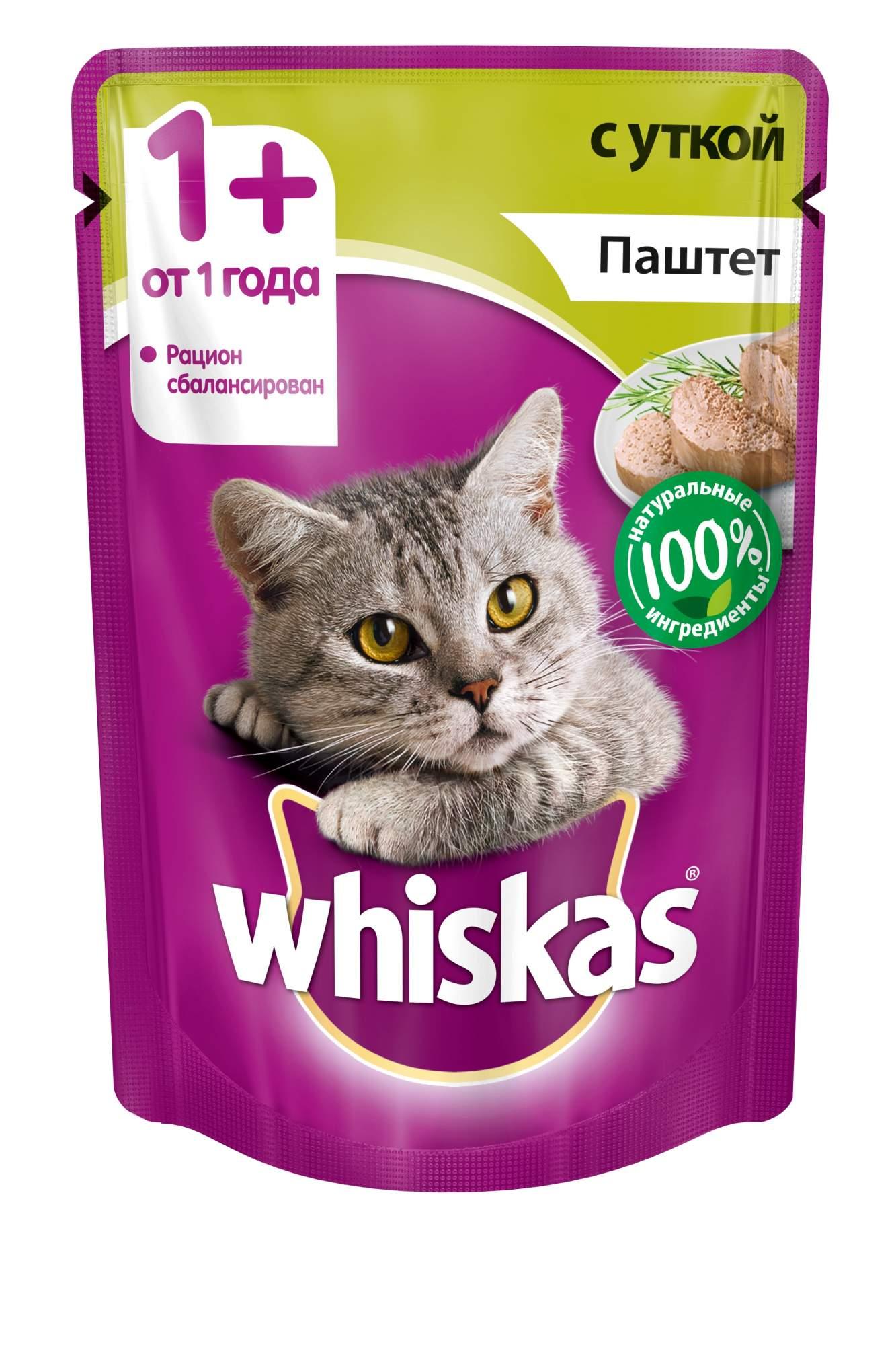 Кошка плохо ест