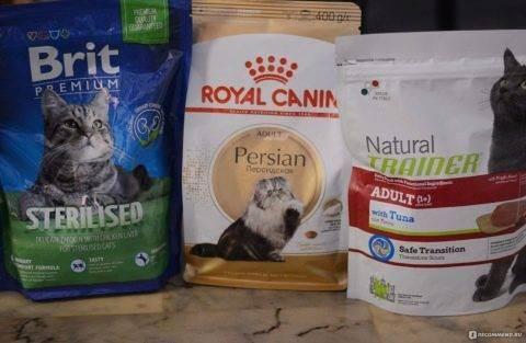 Есть вопрос: можно лилюдям есть кошачий корм?