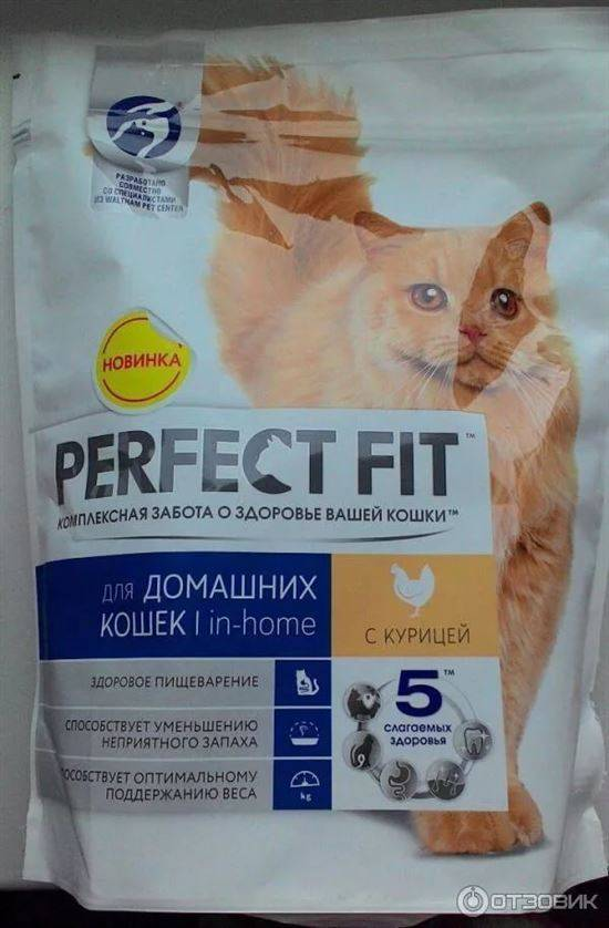 Подробно о сухих и жидких кормах для взрослых кошек и котят от purina one