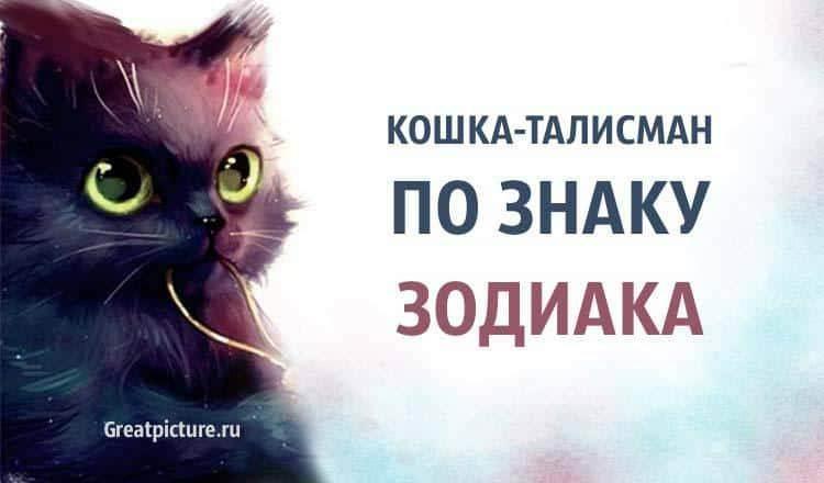 Лев. гороскоп для кошек