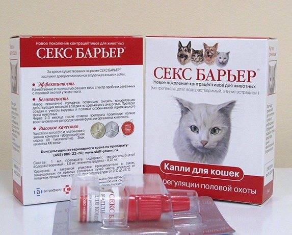Апоквел для кошек: показания и инструкция по применению, отзывы, цена