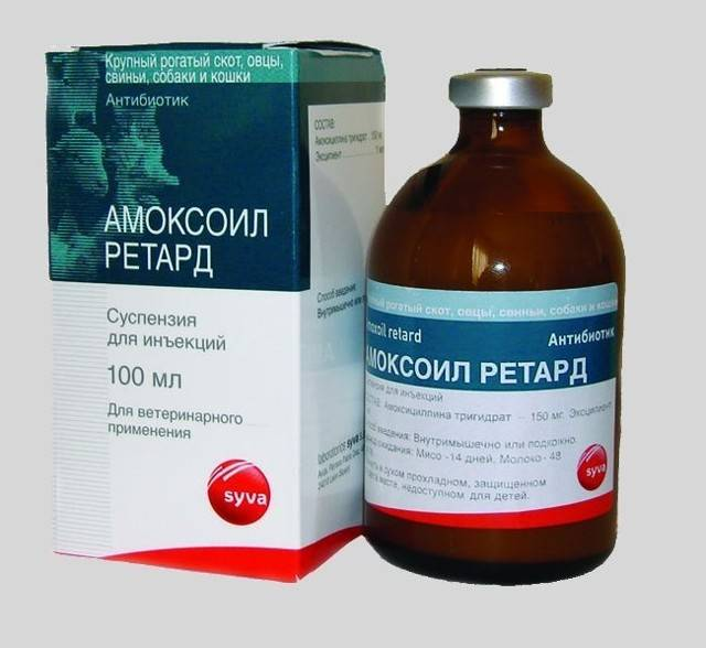 Тилозин 200: инструкция по применению антибиотика в ветеринарии, дозировка препарата