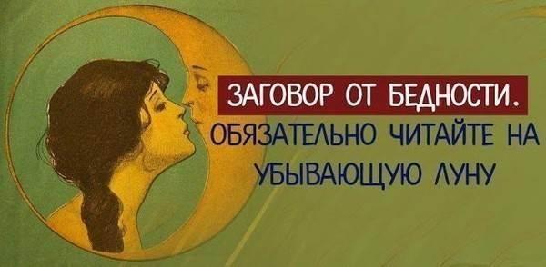 Вопрос про кошек: дневник группы «кошки - это кошки»: группы - женская социальная сеть myjulia.ru