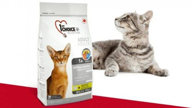 Корм 1st choice (фест чойс) для кошек: плюсы и минусы, отзывы ветеринаров