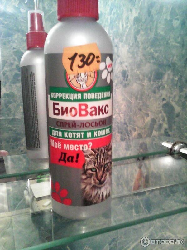 Спрей для приучения котенка к лотку: как использовать средство, чтобы приучить кошку к туалету?
