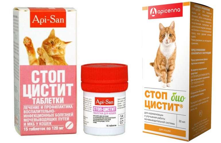 «стоп-цистит»: как давать кошке