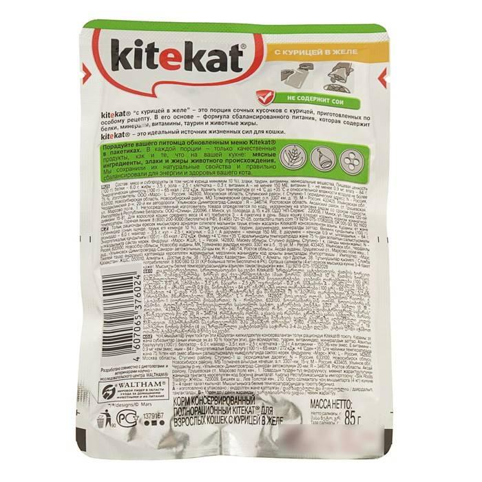 Состав кошачьих кормов: как проанализировать перечень ингредиентов самостоятельно