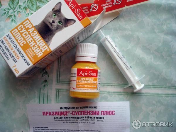 Празицид суспензия плюс для кошек: инструкция по применению, отзывы