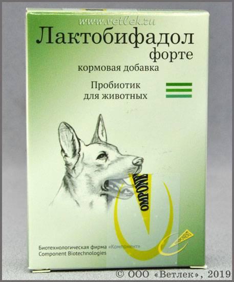 Лактобифадол для кошек и собак