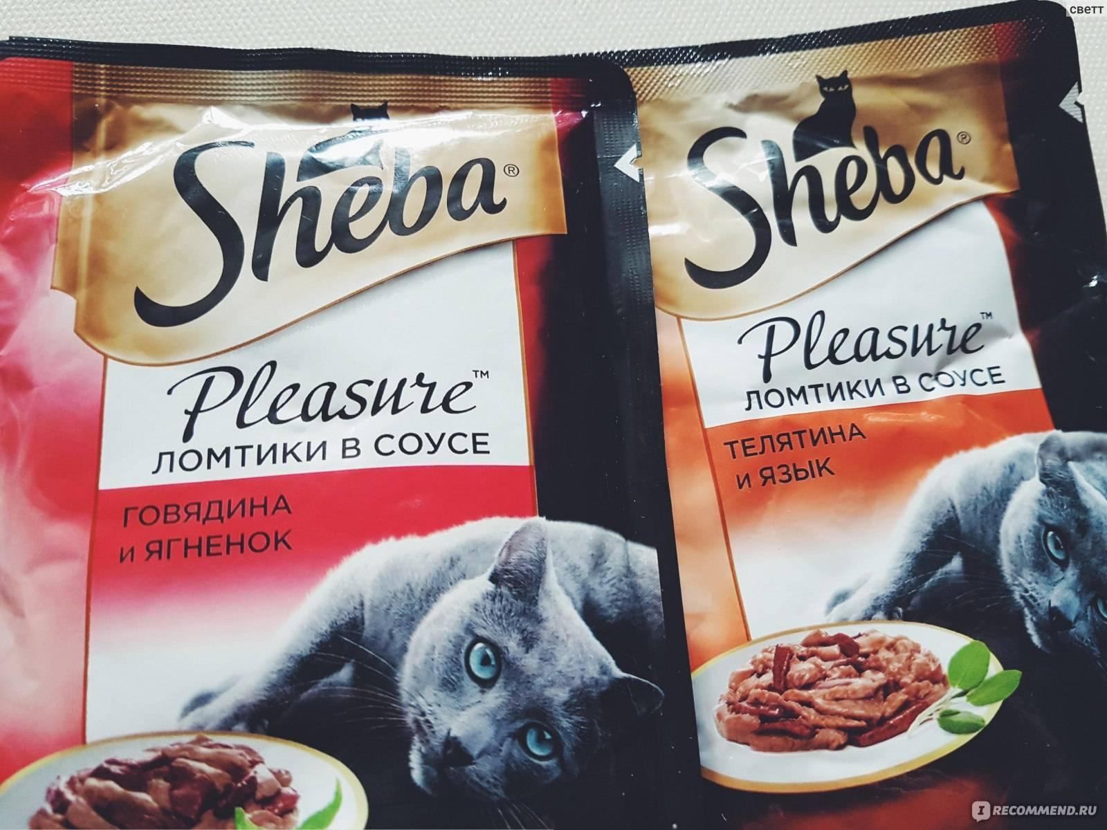 «шеба» (sheba) корм для кошек: обзор, состав, ассортимент, плюсы и минусы, отзывы ветеринаров и владельцев