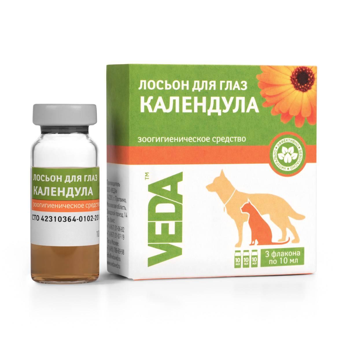 Календула - лечебные свойства и противопоказания, эффективные рецепты