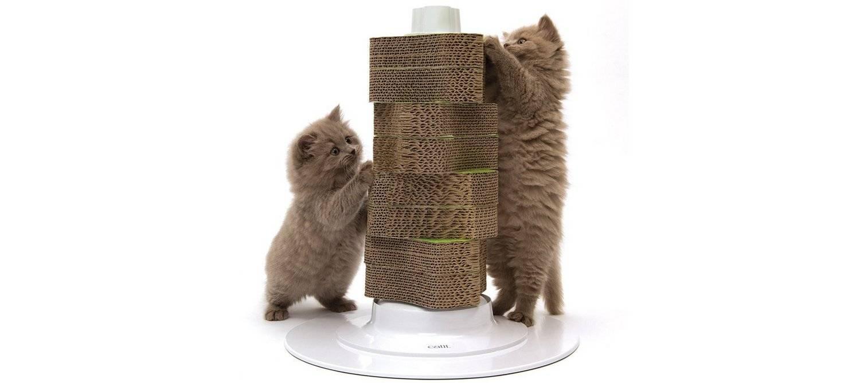 Как приучить кошку или кота к когтеточке?