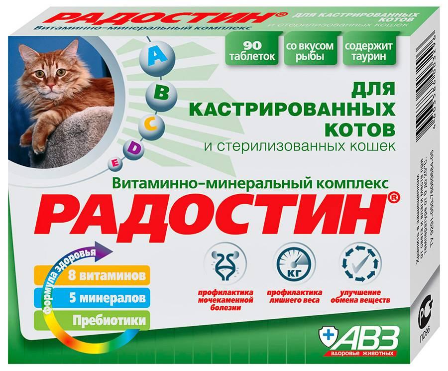 Витамины для кошек при беременности