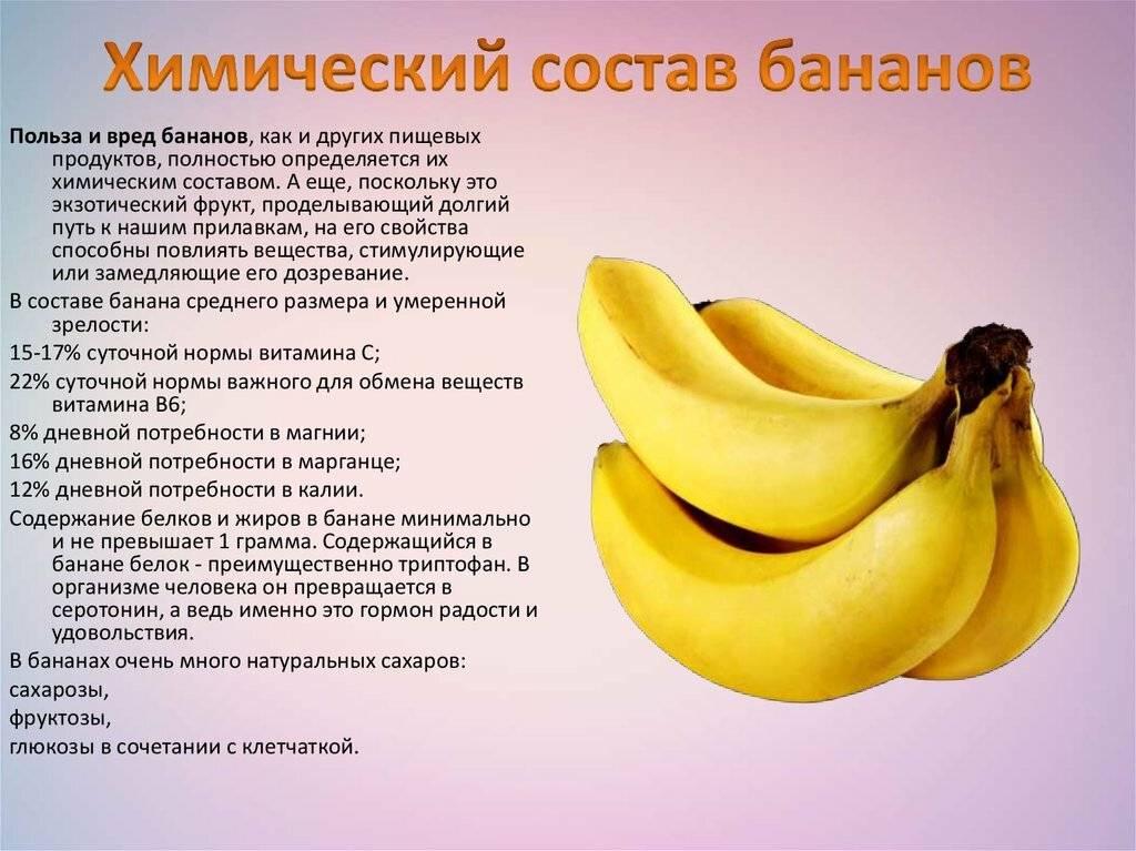 Можно ли котам бананы?