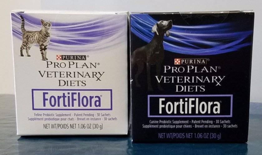 Фортифлора для собак: инструкция по применению, дозировка, аналоги