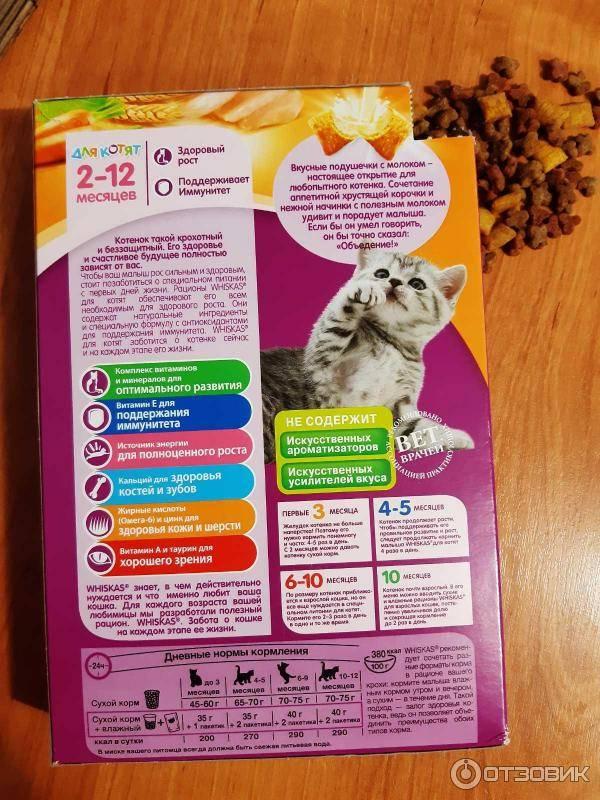 Корм вискас: что добавляют в состав продукта, и почему котят и кошек нельзя кормить вискасом?