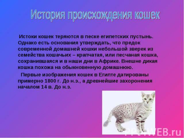 Домашние кошки: откуда они пришли?