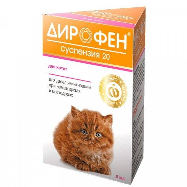 Эффективные антигельминтные средства от глистов для котят