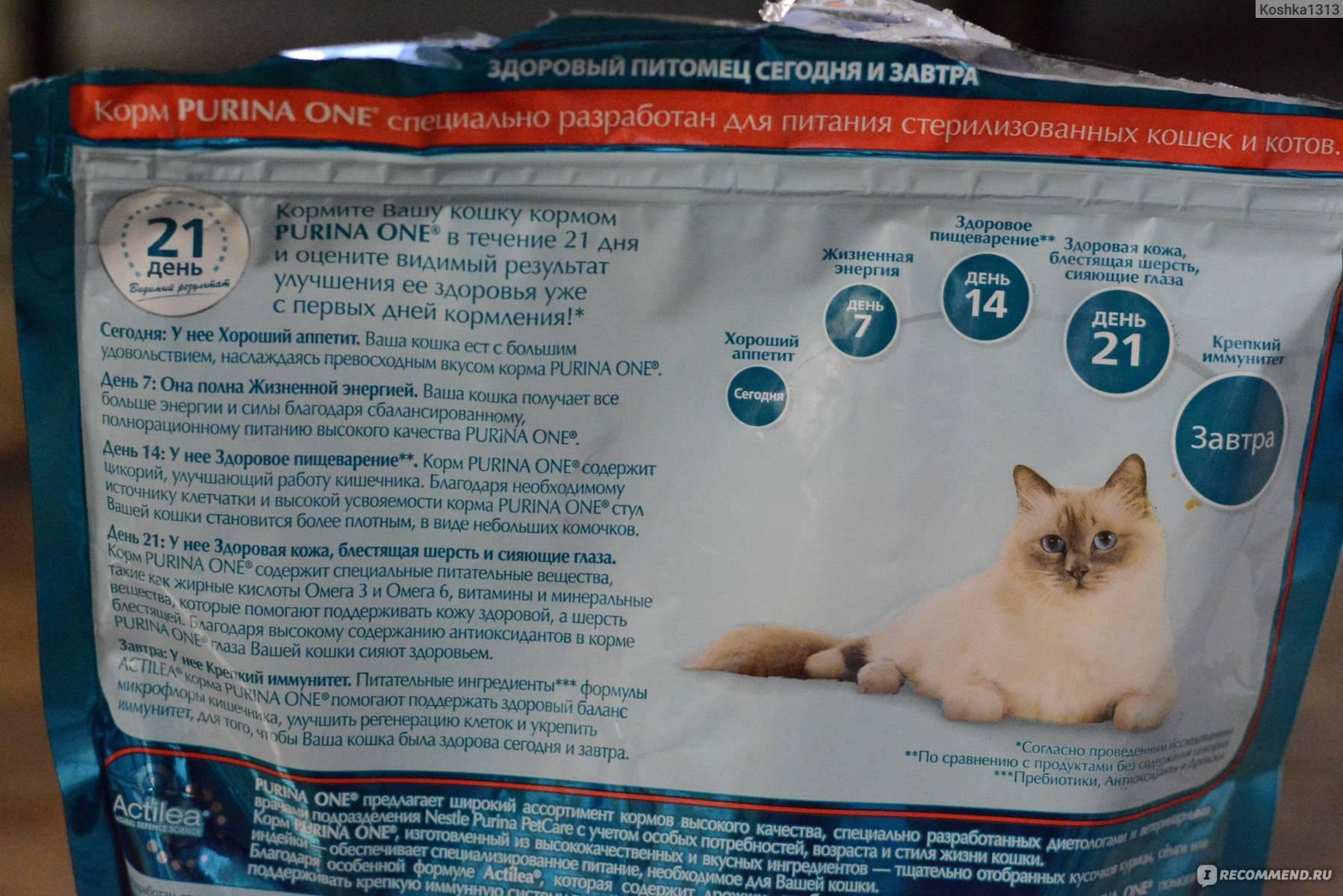 Корм для кошек пурина one: описание и отзывы ветеринаров