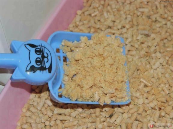 Древесный наполнитель для кошачьего туалета: комкующийся и впитывающий, преимущества и недостатки, отзывы владельцев