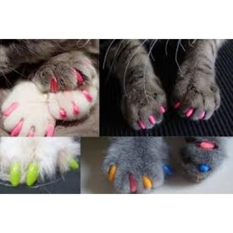 Силиконовые накладки на когти для кошек: какие лучше