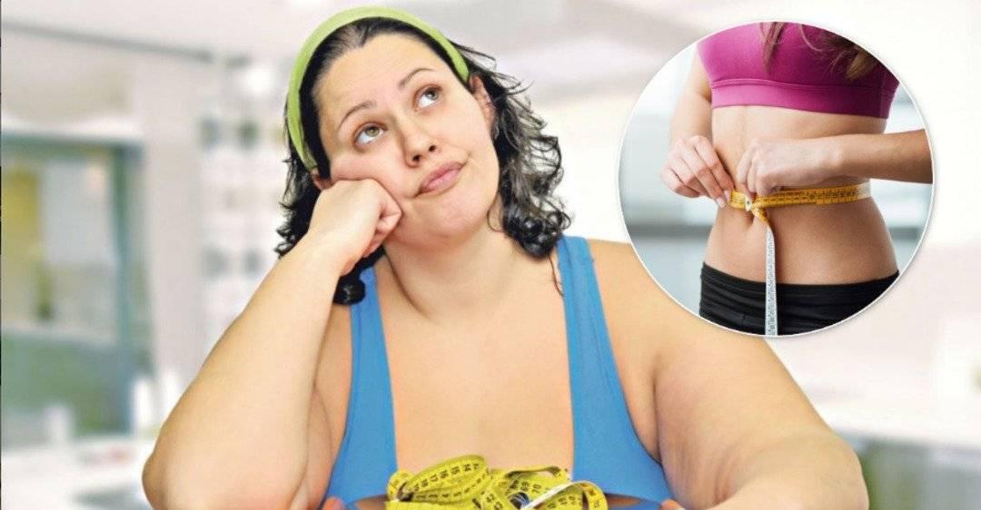 Кот ничего не ест, сильно похудел и ослабел: что делать?