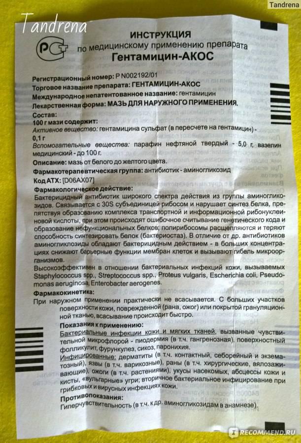 Гентамицин для собак | инструкция по применению гентамицина у собак