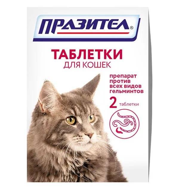 Антигельминтные препараты для кошек   широкого спектра, отзывы, лучшие средства