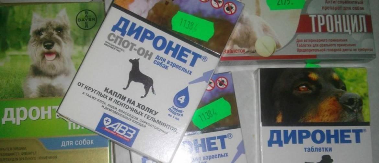 Диронет спот-он для кошек - инструкция, отзывы, цена