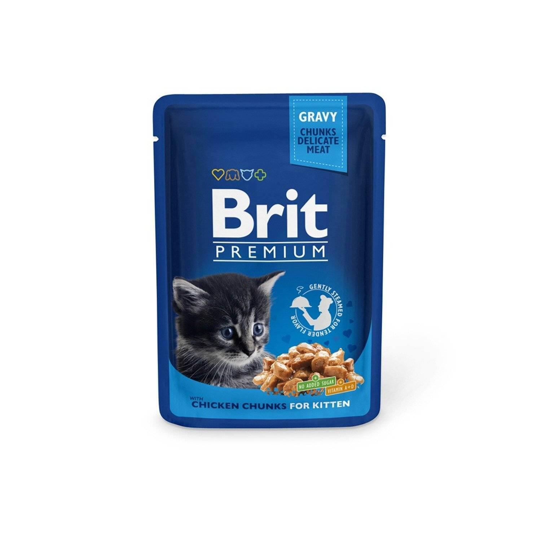 Обзор и описание линейки кормов для кошек brit («брит»)