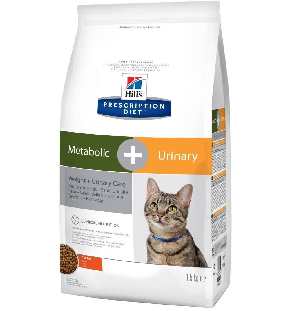 Обзор корма hills для кошек: состав и подробное описание всех линеек