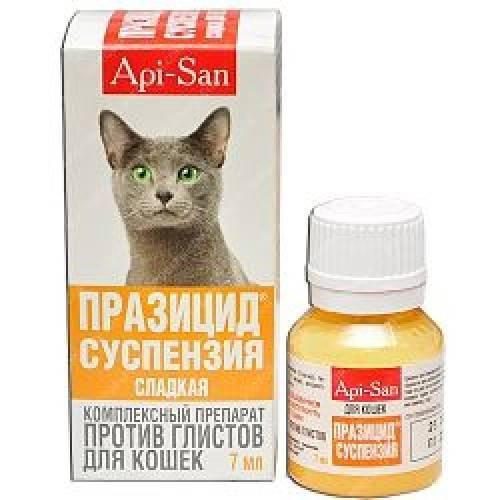 Как применять празицид для кошек?